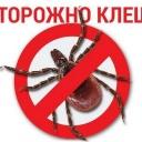 Сезон клещевых инфекций в разгаре!